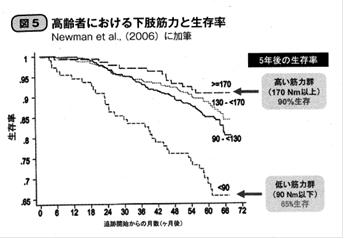 高齢者における下肢筋力と生存率